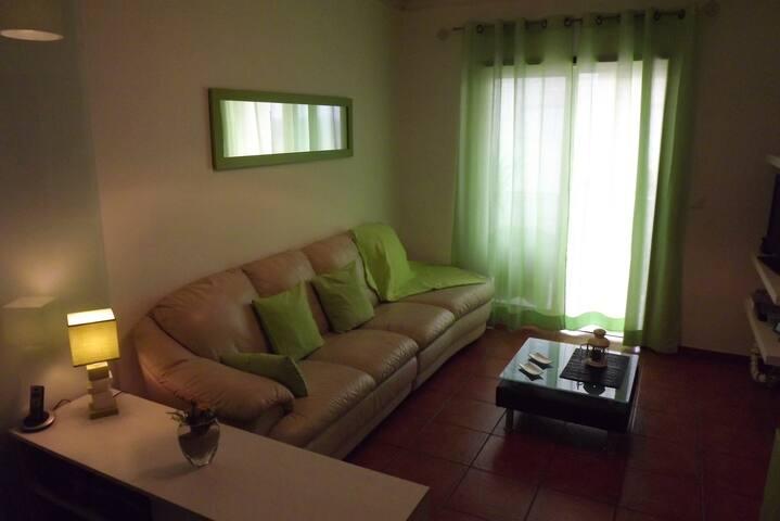 Superbe Duplex à 30mm des plages - Oliveira do Bairro - Leilighet