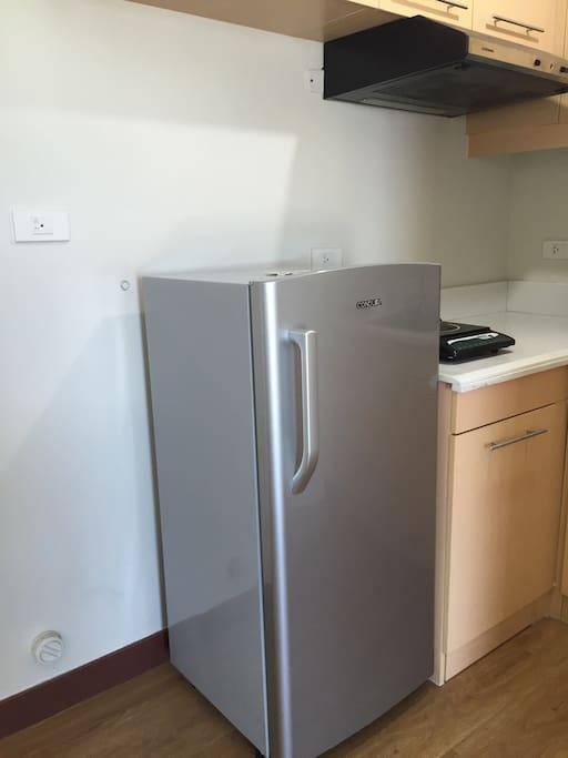 Refrigerator, Induction Stove with range hood