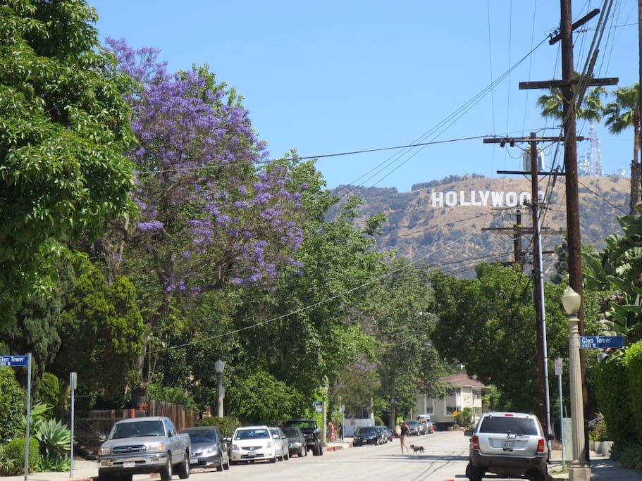 Hollywood Sign neighborhood view