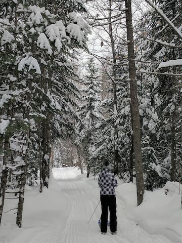 Cross Country/ Snowshoeing trails
