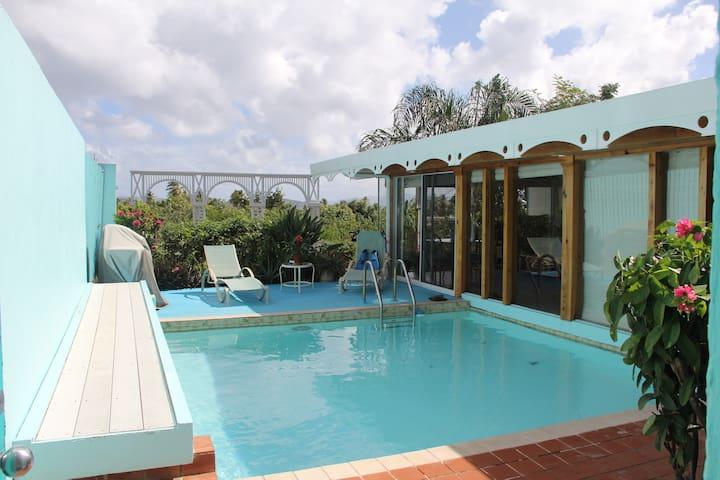 Villa Bella Rosa-St Thomas-private pool-free WiFi - St. Thomas - Wohnung