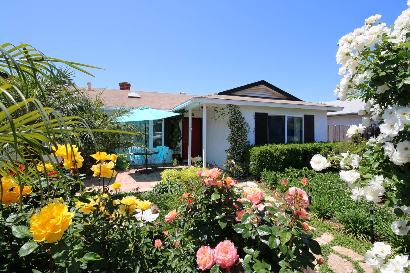 Roses are in full bloom in the front and we have a breakfast spot to watch.