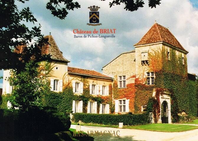 Château de Briat - Mauvezin-d'Armagnac - Castillo