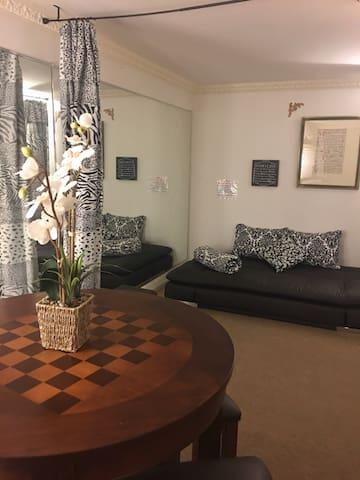 Try my new Euro Sofa and bed! - San Francisco - Loft