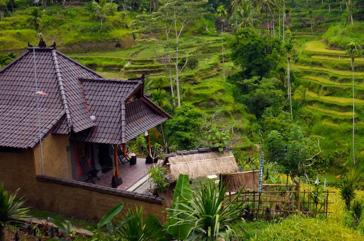romantic house on rice terrace - Ubud