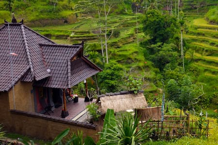romantic house on rice terrace - Ubud - House