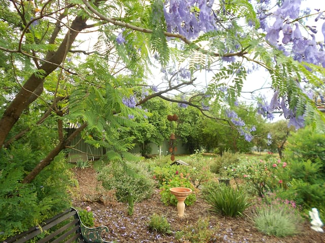 Set amongst an established garden with many native trees & shrubs attracting abundant bird-life.