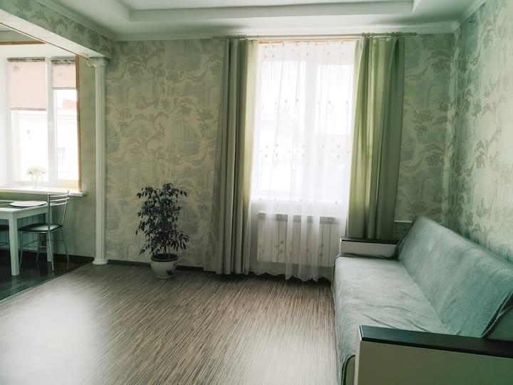 Двухкомнатная квартира-студия проспект Ленина 24