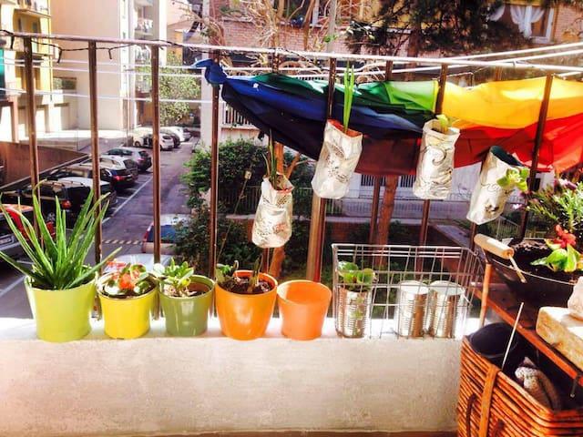 Eco Art Home