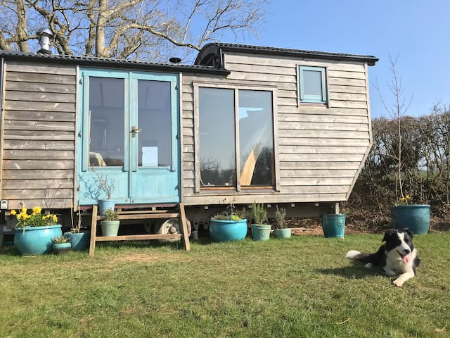 Secluded Eco Shepherds Hut with wood fired hot tub