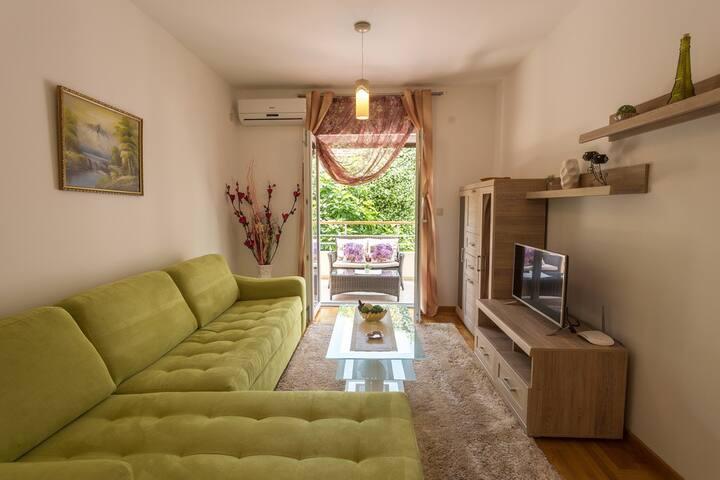 Lux apartment Nik 11  Djenovici