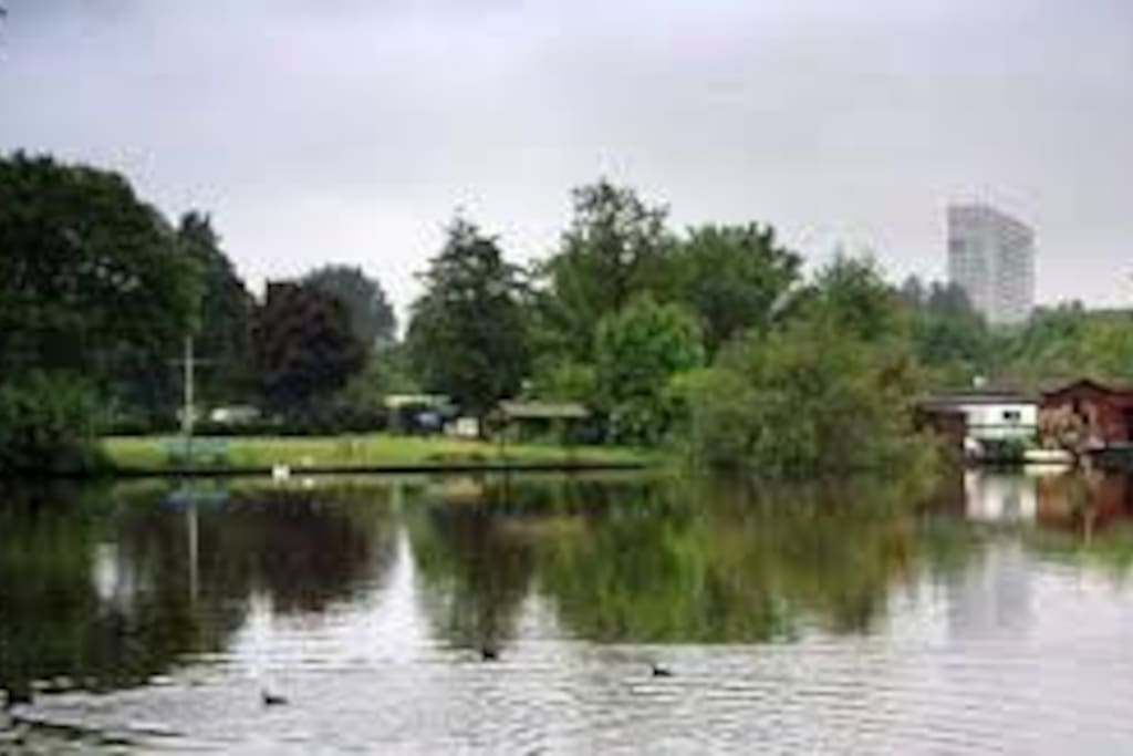 view at the campsite
