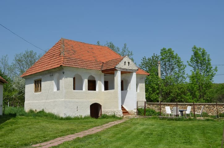 Zamolxe, Casa Moasa Lenuta 4