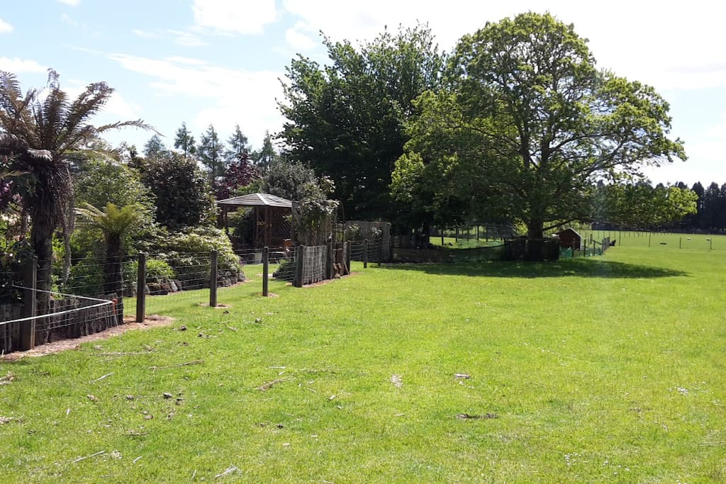 Paddock and Garden