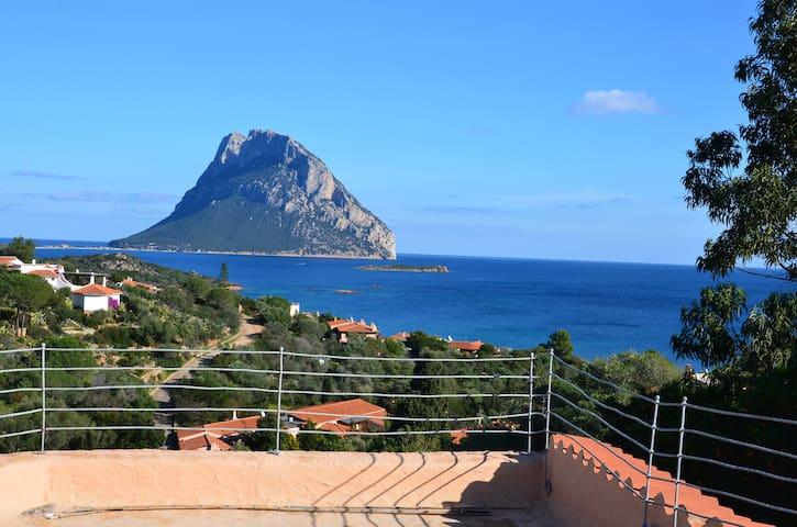 Villa Gavina (Costa Dorata) - Costa Dorata - Villa