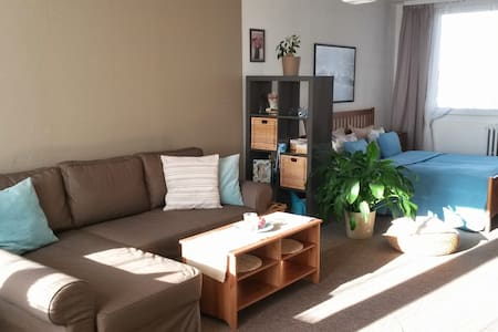 Prague´s BEST DEAL apartment - Praga - Apartamento