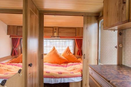 Campingplatz Danuta Insel Wolin - Camping 2 - Wolin - 帳篷