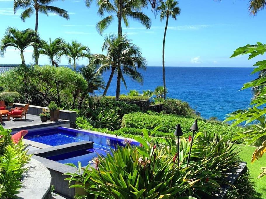 Coconut trees surround the cut lava stone pool deck, spa & infinity edge pool.