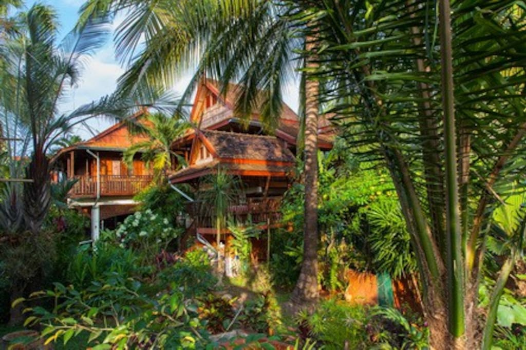 our ensemble of rooms 3,4,5 are hiding in this ensemble of teak houses - nestled in a big mature garden