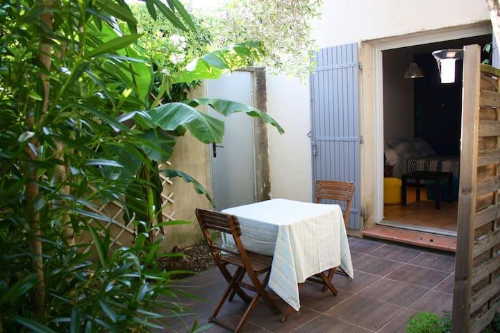 Studio/Terrasse - île de la Barthelasse en Avignon
