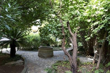 Il giardino di Oliver Guest house - Palermo