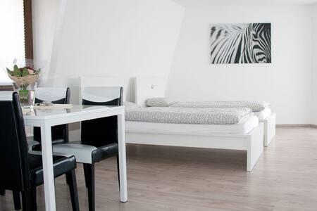 1 ZIMMER WOHNUNG Stein/Säckingen - Bad Säckingen - Apartment