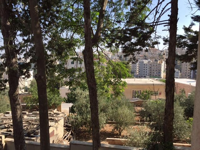 Private House in Great Quiet location - Amman - Ev