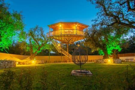 The Tree House at Zante - lagos