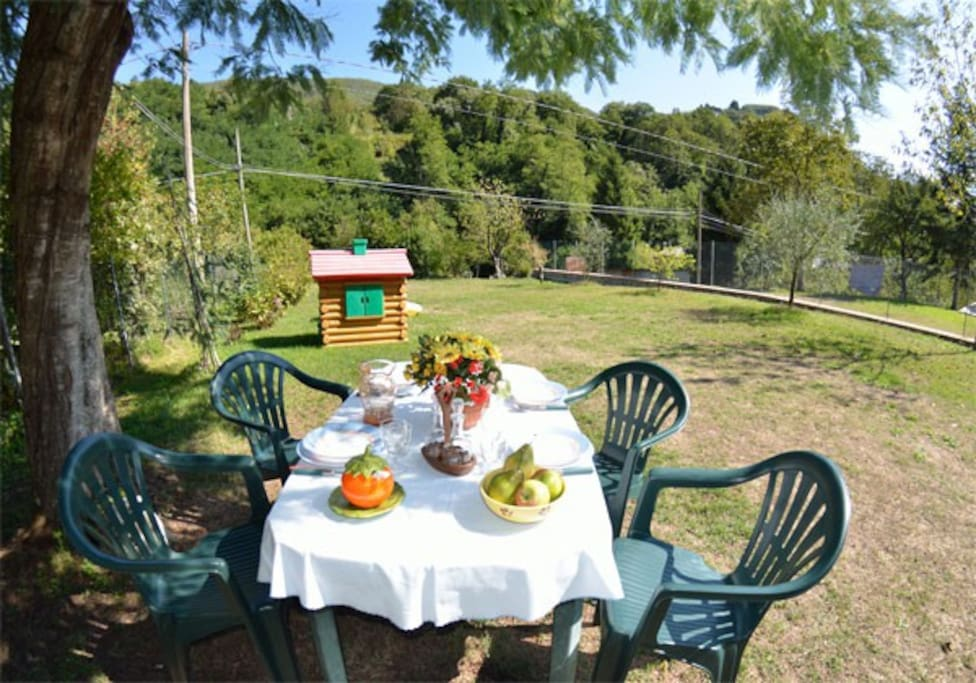 garden and dining table