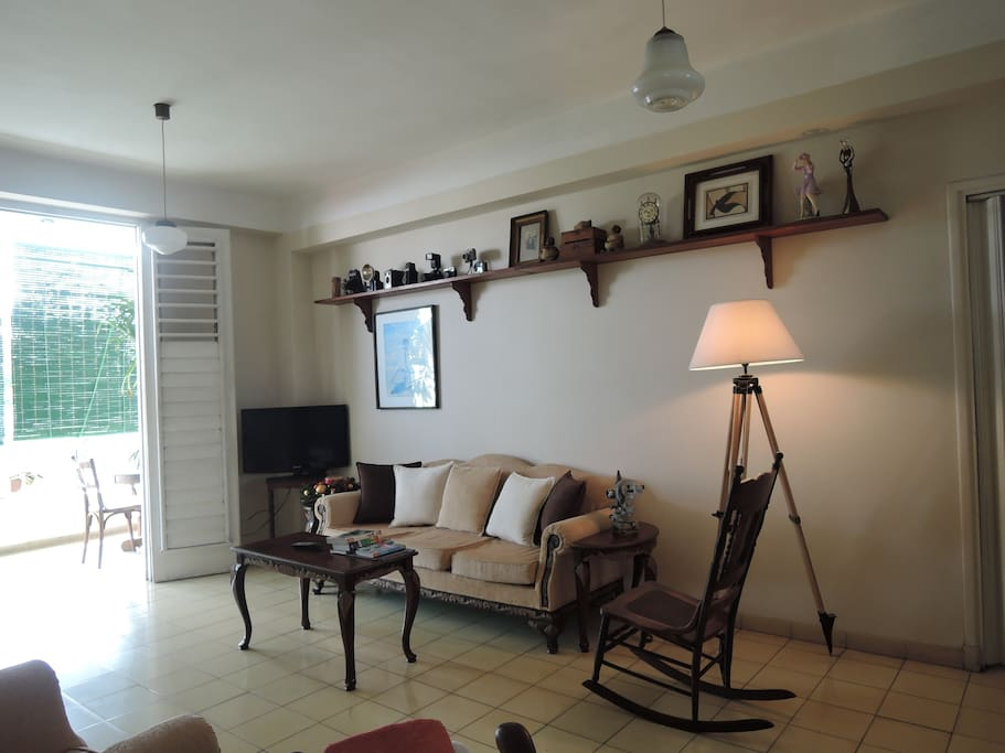 The cozy living room with an attractive decoration. Terrace easy accessible from the room