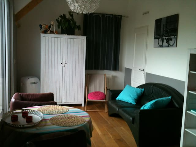 """B&B """"BEAUSEJOUR"""" Chambre Double 1 - Issy-les-Moulineaux - Bed & Breakfast"""