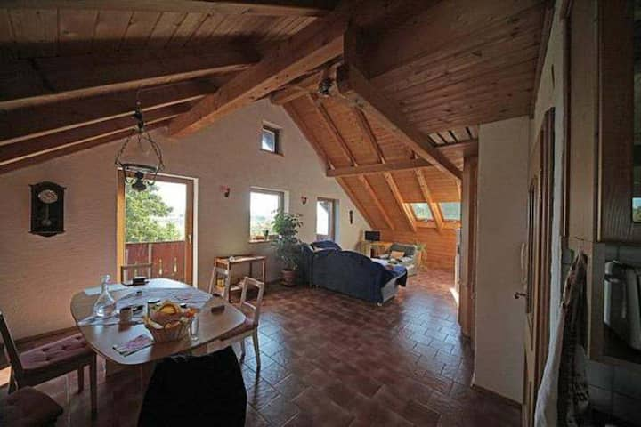 Schleiferhof - large apartment, many beds