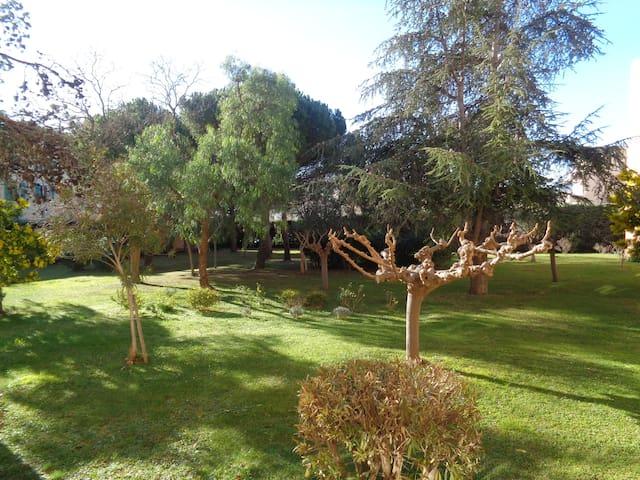 Jardin privé interdit d'accès, calme exposition plein sud