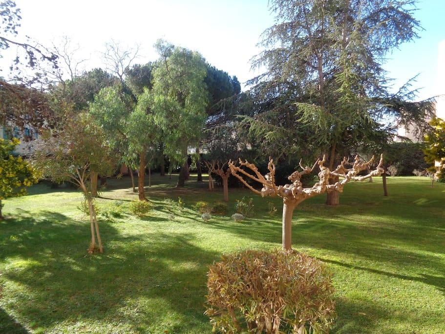 Jardin privé calme exposition plein sud.