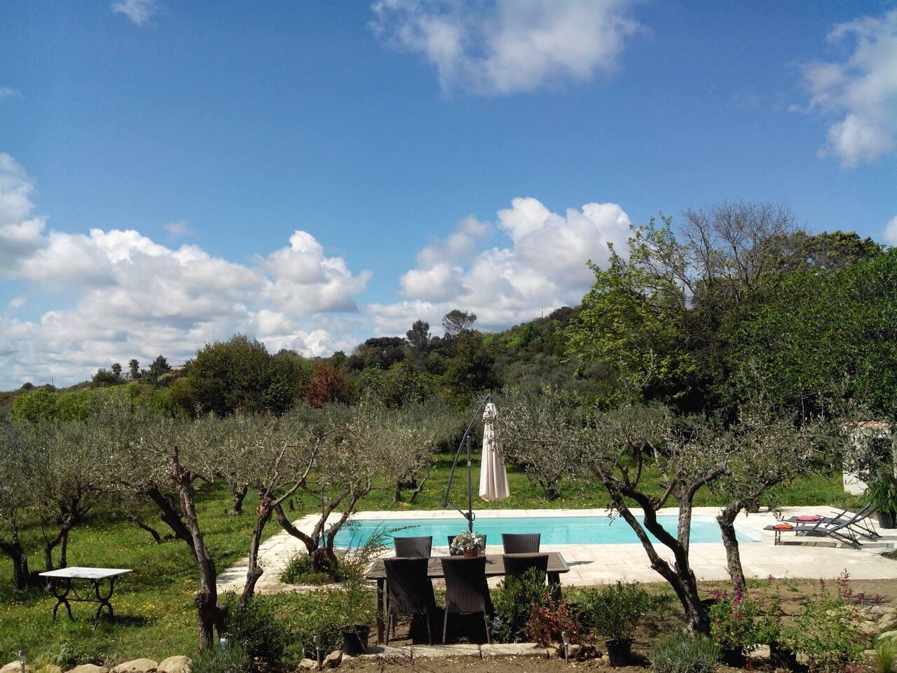 la piscine dans son écrin de nature/the pool in its natural beauty