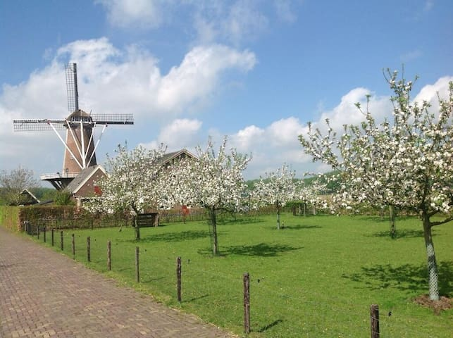 kamer in woonboerderij bij Utrecht - Werkhoven - Huis