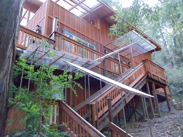 "The ""Bird's Nest"" in the Redwoods - Occidental - Casa"