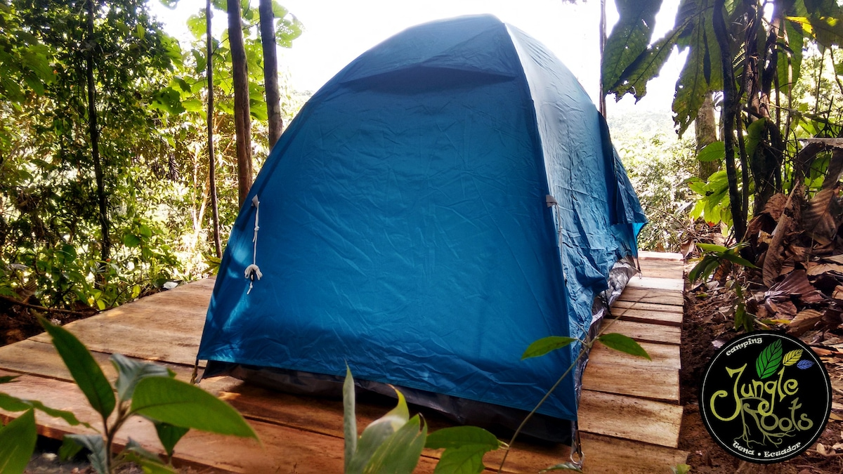 Jungle Roots Eco C&ing Amazonia; tents for rent - Tents for Rent in Tena Napo Ecuador & Jungle Roots Eco Camping Amazonia; tents for rent - Tents for Rent ...