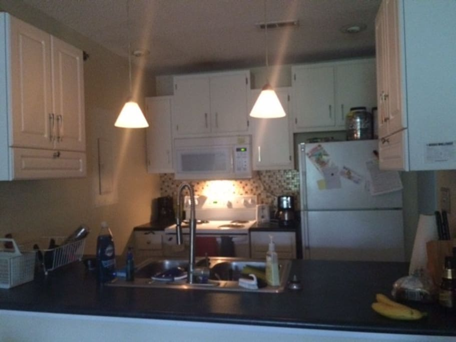 Fully equiped kitchen! with dishwasher and microwave.