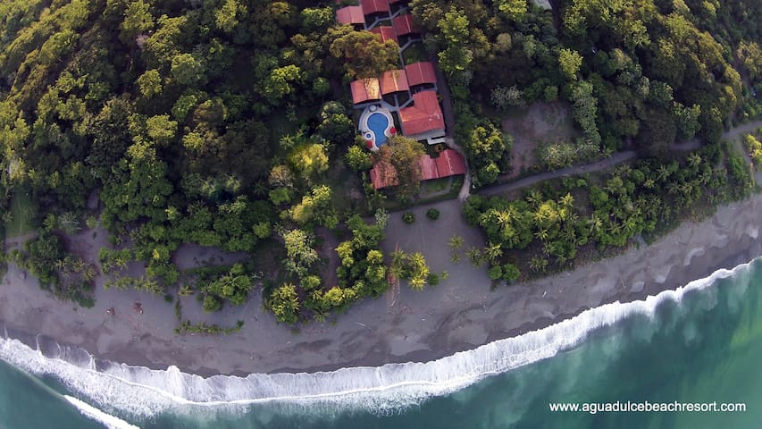 Garden Suite - Steps to the Beach! - Osa Peninsula, Costa Rica - Bed & Breakfast