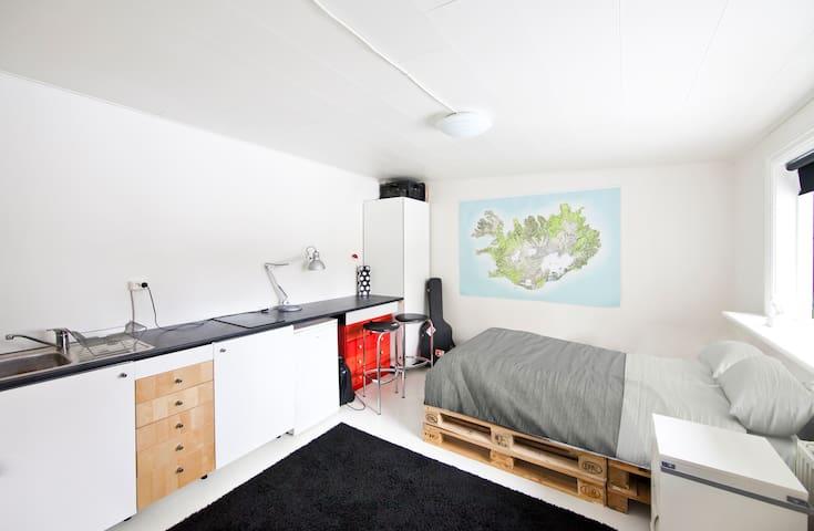Cozy Studio - Central Location - Reykjavík - Byt