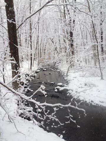 Little River Trail in Winter.