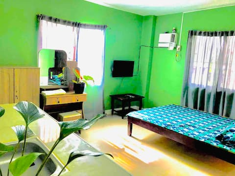 Rozay Travellers Inn   Kabankalan - Green