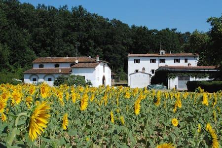 """Vacation home in Tuscany""""Paduletta"""" - Calcinaia  - Casa"""