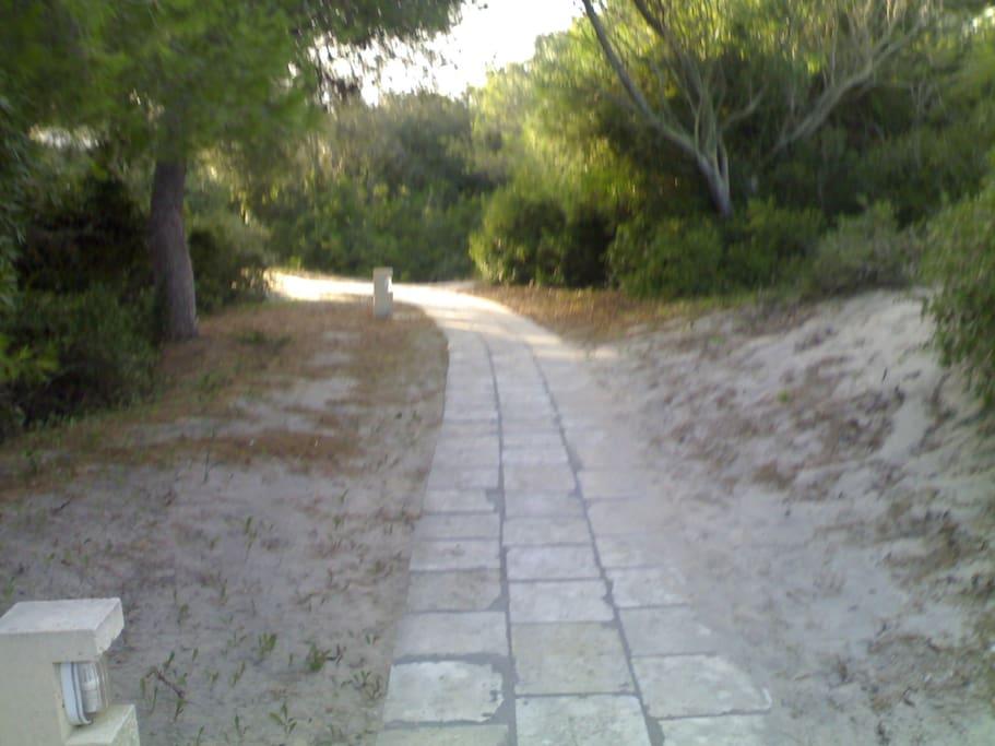 sentiero verso il mare