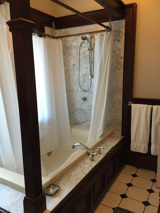 Jetted tub with shower in Master Bath