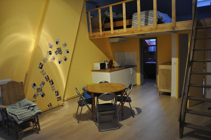 grand studio avec mezzanine