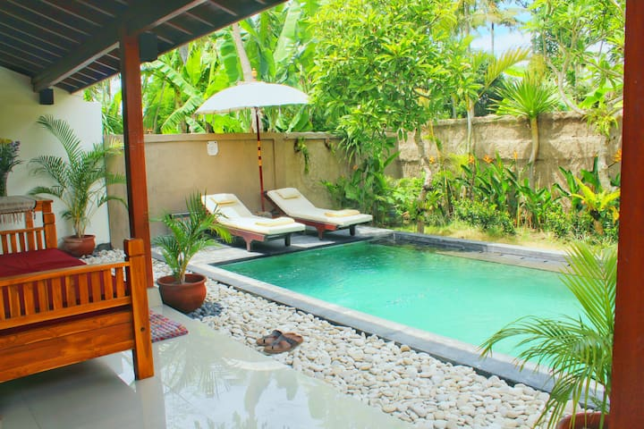 House with private pool in Ubud