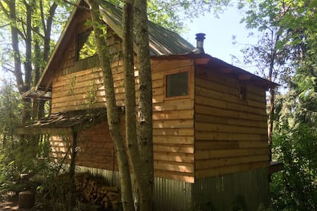 The Owl's Nest - Vashon - Cabane