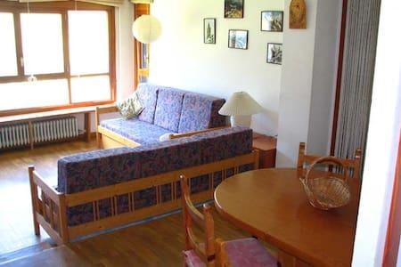 Baqueira 1500, 2 hab, 2 banys, WIFI - Baqueira - Apartment